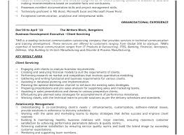 Resume Examples For Business Analyst Retail Analyst Resume Sample ...