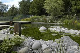 Swimming Pool:Simply Natural Swimming Pool With Stone Deck Idea Backyard Pond  Design With Natural