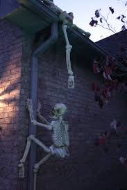 more skeletons climbing halloween decor funny halloween skeletons
