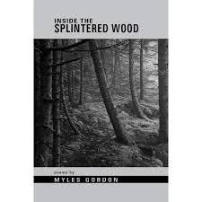 Inside the Splintered Wood by Myles Gordon