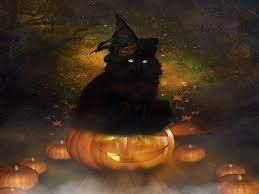 Halloween Black Cat~ HD desktop ...