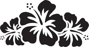 ポップでかわいい花のイラストフリー素材no1328白黒ハイビスカス