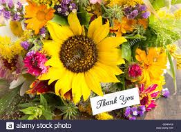 Summer Thank You Thank You Card With Bouquet Of Summer Flowers Stock Photo 111711718