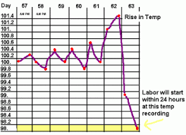 31 Judicious Canine Temperature Chart