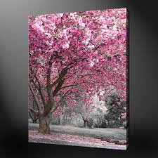large pink canvas wall art