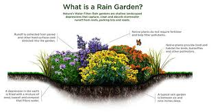 Small Picture Home Rain Gardens LibGuides at University of Illinois at