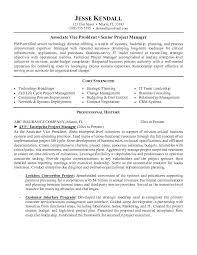 Vice President Resume Samples Vp Of It Resume Vice President Of Client Services Resume All