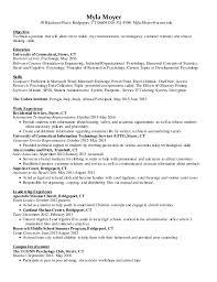 information essay in bengali pdf