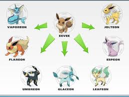 Shelgon Evolution Chart Evolutionary Items Pokemon X And Y Wiki Guide Ign