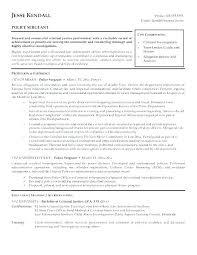 Resume Of Team Leader Sample Team Leader Resume Spacesheep Co
