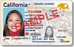 Or You'll Starting The Us Fly Daily Democrat Dmv-issued Need A 2020 Why Passport Id Real To Inside In –