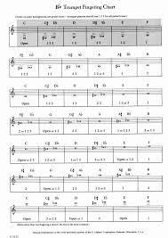 B Flat Tuba Finger Chart 58 Unmistakable Baritone Note Chart
