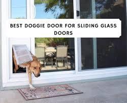best doggie doors for sliding glass