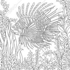 Small Picture 21 best Ocean World images on Pinterest Coloring books Adult