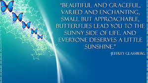 Quotes About Butterflies In The Time Of The Butterflies Quotes