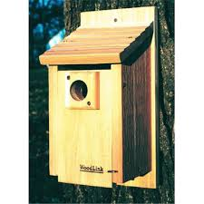 woodlink bb3 15 in traditional bluebird house