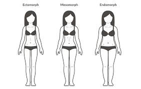 female body types ectomorph