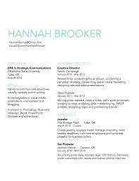 New Resume Format 2012 Pdf Simple Professional Resume Template The