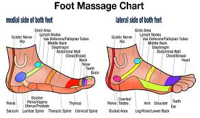 Free Downloadable Foot Massage Side Chart Foot Reflexology