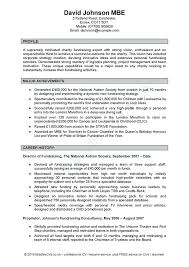 Professional Statement Examples Cool Example Personal Profile Statement Resume For Examples Summary