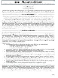 Sales Marketing Resume Resume Linkedin Profile Writing