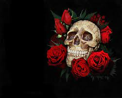3D Skulls and Roses Wallpapers - Top ...