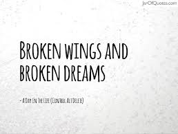Broken Dreams Quote Best Of Broken Wings And Broken Dreams Jar Of Quotes BROKEN QUOTES