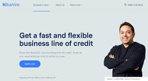 Business Line Of Credit A Primer For Small Business Owners