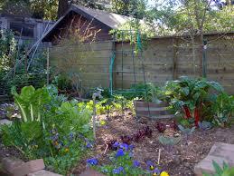 Kitchen Garden Vegetables Ipm A Extension Master Gardener