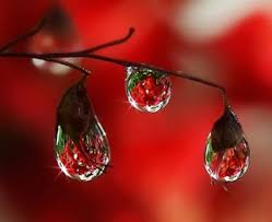 beautiful rain drops wallpapers with quotes. Rain Wallpapers Images Pictures Inside Beautiful Drops With Quotes