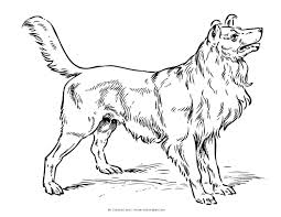 Dogs Clor Page Dog Coloring Pages
