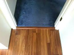 wood floor transitions blooming ideas tile to transition doorway installing strip carpet