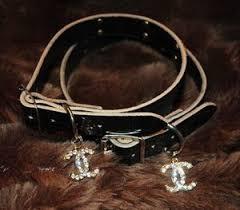 chanel dog collar. chanel designer dog collars collar n