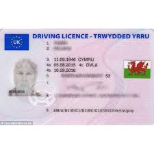 The License Driving Dragon Gift For – Your Welsh Stickers Red Shop -