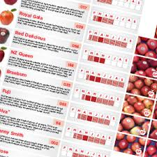 Apple Variety Chart Mr Apple New Zealand Apple Exporters