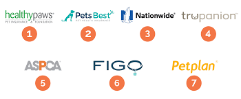 Pet Insurance Comparison Chart 2015 The Best Pet Insurance Of 2019 Your Best Digs