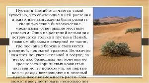 Реферат на тему растения полупустынь и пустынь Интересное в мире  для реферат на тему растения полупустынь и пустынь marmot