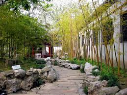 Small Picture 57 best Bamboo images on Pinterest Bamboo garden Landscaping