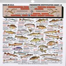 Freshwater Fish Chart Tightline Publications Fishing F W I D 8 Freshwater Identification Chart