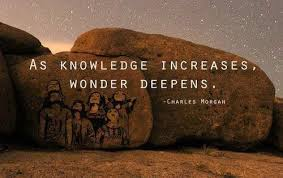 Knowledge Quotes Magnificent 48 Best Knowledge Quotes SayingImages