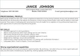 Resume Profile Gorgeous Resume Personal Profile Statement Examples In Sample Folous