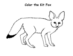 Small Picture Color the Kit Fox Coloring Pages Bulk Color