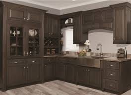 Kitchen Cabinets Stain Stain Kitchen Cabinets Grey Yes Yes Go