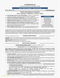 Resume Of A Java Developer Professional Template 22 Senior Java