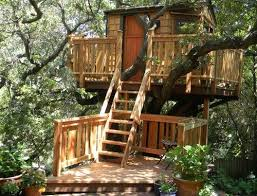 Pete Nelson S Tree Houses Finished Watching House Tv Show Now Throughout Simple Design