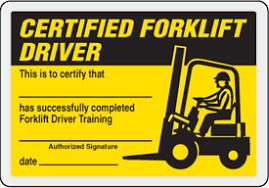 Free Forklift License Template Download Magdalene Project Org