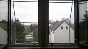 Der Katzenbalkon Ein Fenster Wird Zu Spiel Liegeplatz Für Die