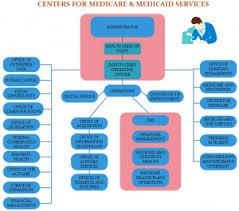 Cms Org Chart Cms Org Chart Template