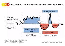 Dr Hamer Disease Chart Pdf Lungs Sbss
