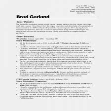 Beautiful Basic Resume Objective Awesome Judgealito Com